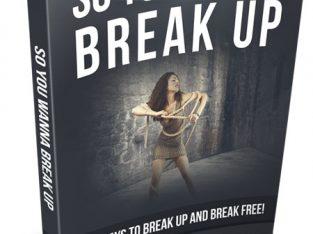 SO YOU WANNA BREAK UP