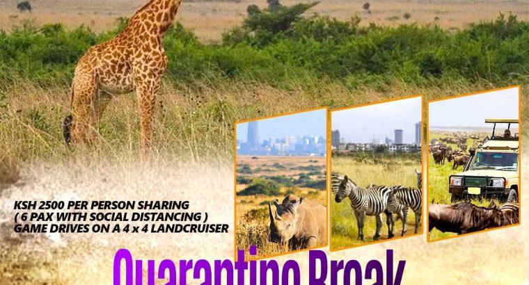 Quarantine Break to Nairobi National Park